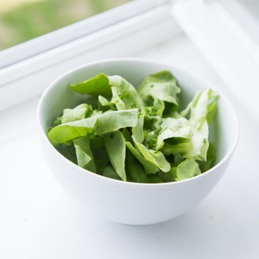 Gemischter grüner Salat mit Honig-Senfdressing