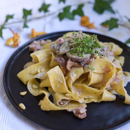 Tagliatelle mit Eierschwammerl-Pilz-Sauce und gerösteten Pinienkernen